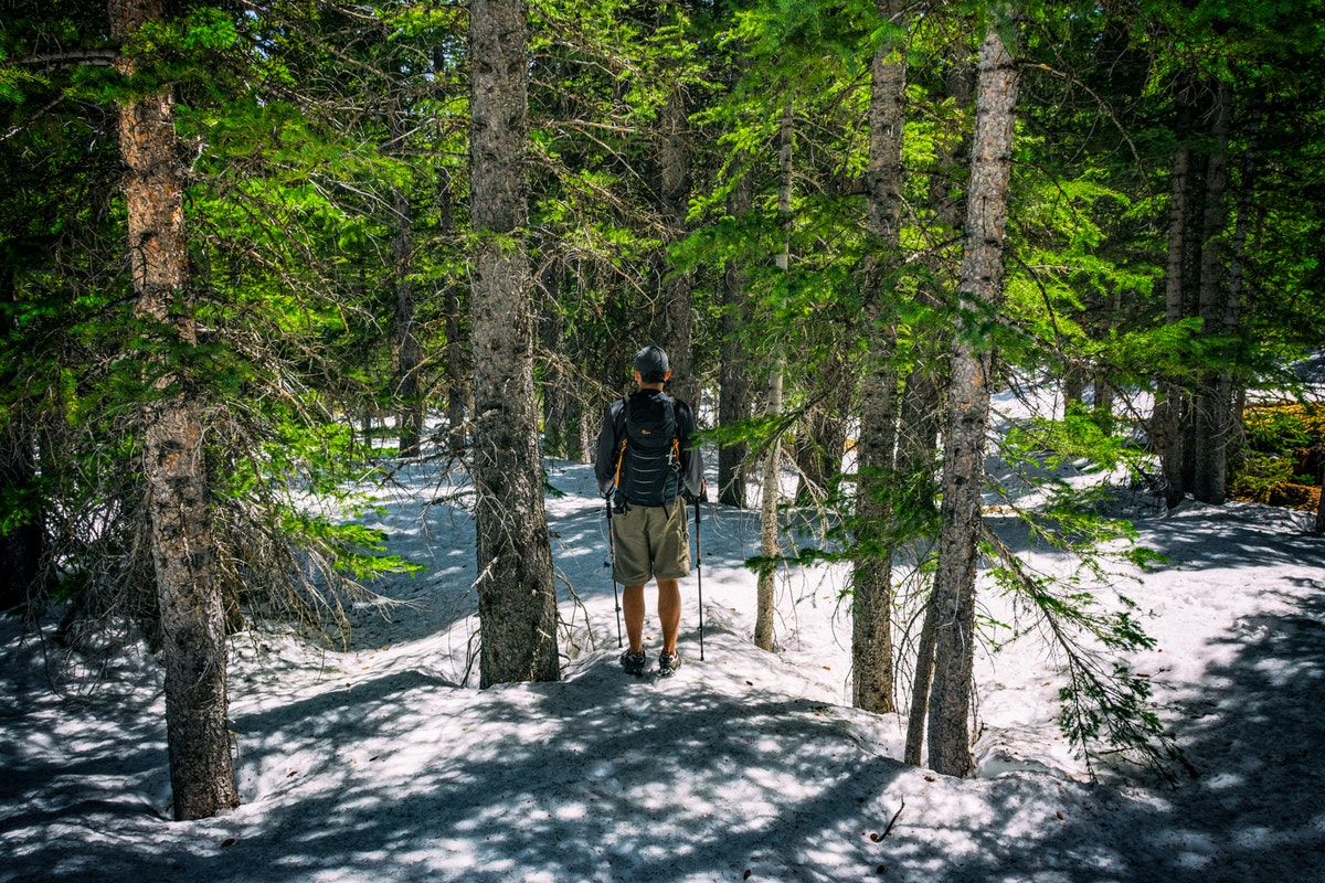The Pros and Cons of Hiking with Trekking Poles