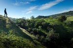 Hike To Little Yosemite In The Sunol Canyon View Trailhead
