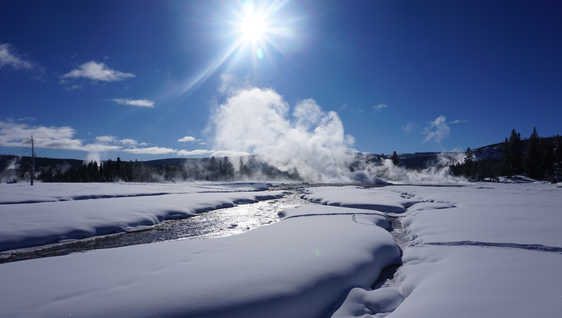 5 Reasons Why You Should Explore Yellowstone National Park