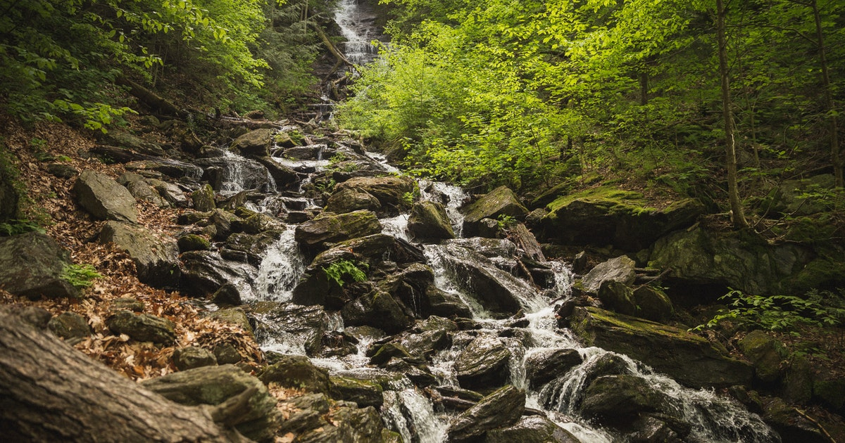 Auto Parts Store Nearby >> Hike Mt. Greylock via Money Brook Trail, Hopper Road ...