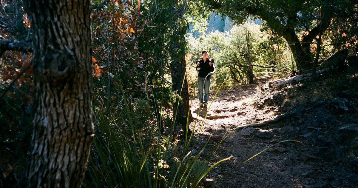 Jack Brooks Park Trail Texas
