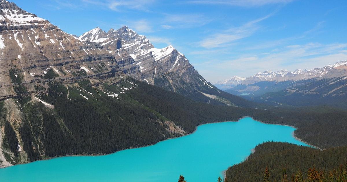 Image result for peyto lake