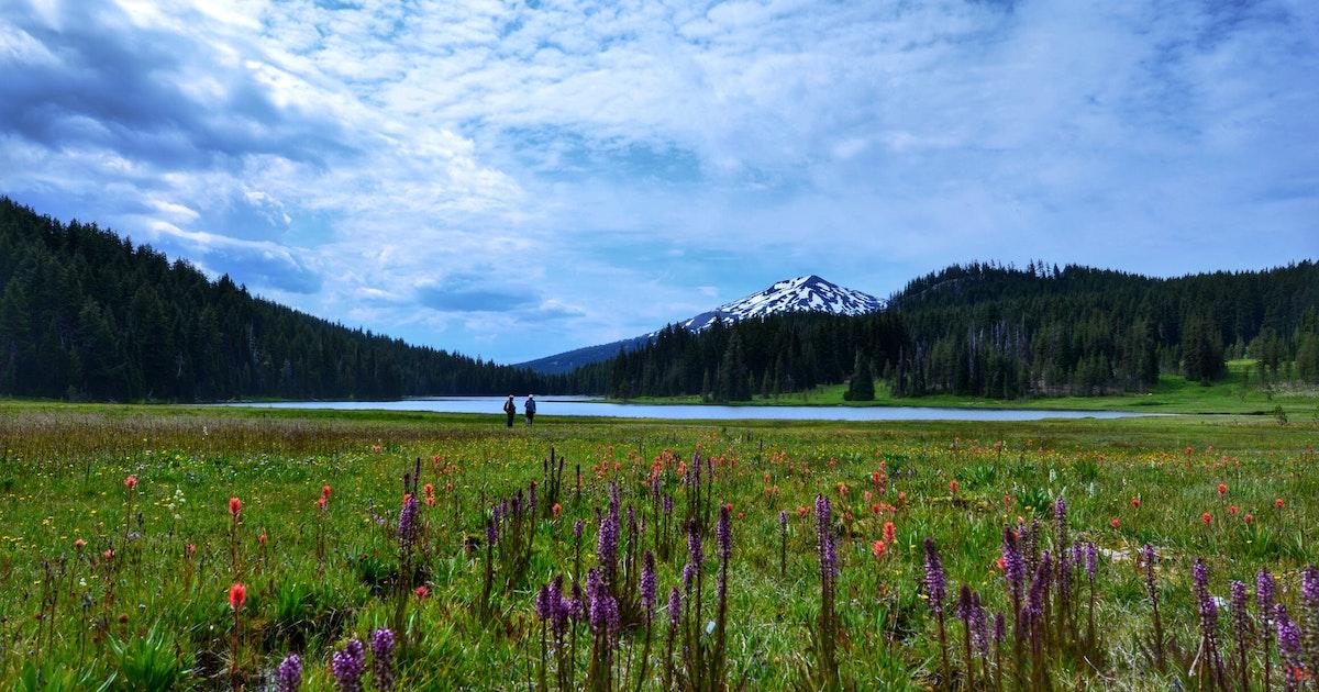 Camp at Todd Lake, Bend, Oregon