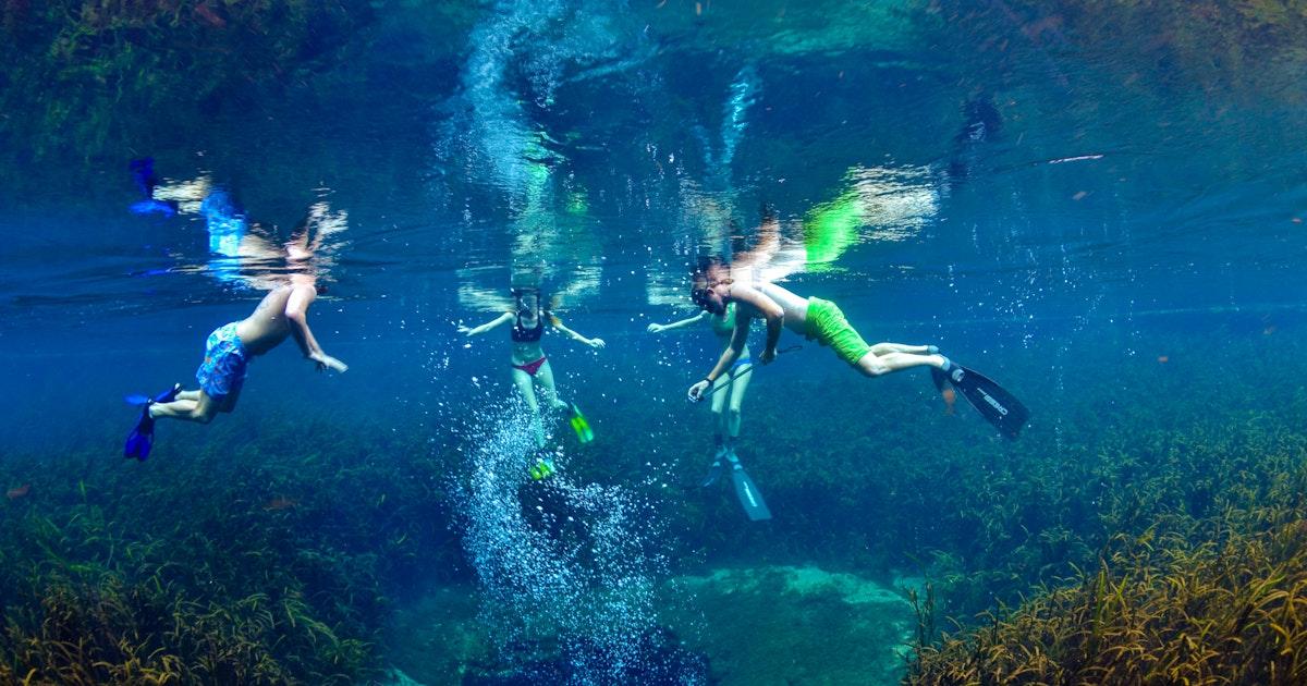 O Brien Auto Park >> Snorkel at Ichetucknee Blue Hole, Blue Hole Spring Trail