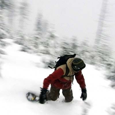 Backcountry Snowshoe And Snowboard Near Lolo Pass Crooked