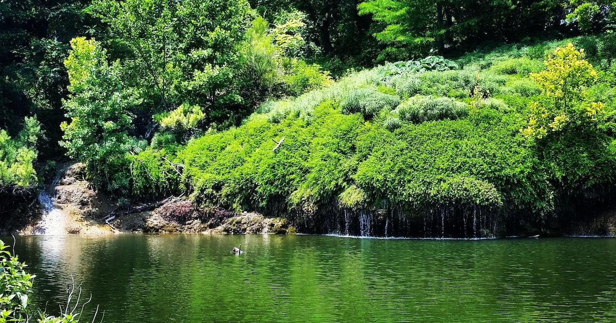 Hike to Crockett Gardens and Falls, Cedar Breaks Park