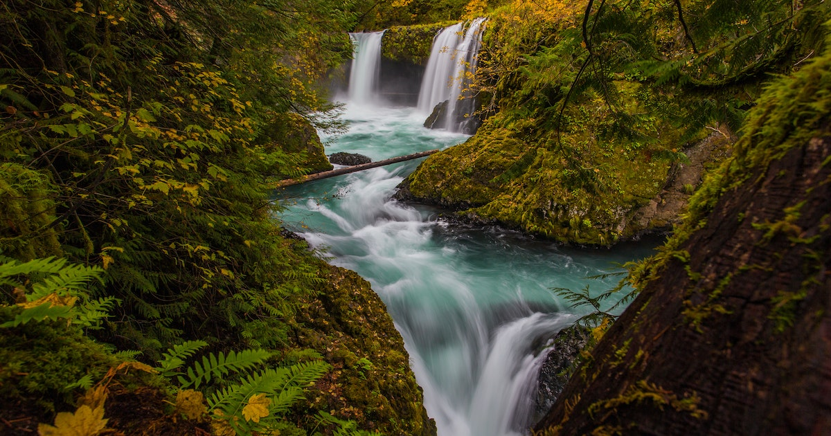 Finish Line Auto >> Why the Columbia River Gorge Is Better Than a National Park