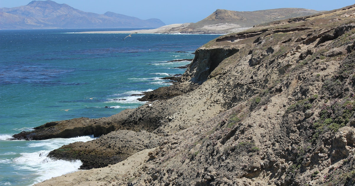 Hike the black mountain trail santa rosa island for Family motors santa maria ca
